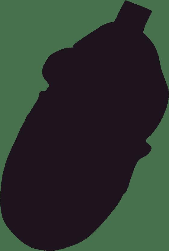 histoire marque details chausson 03 - Histoire de la marque