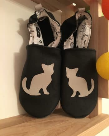 Chausson chat